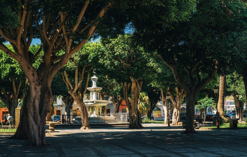 Head to Plaza del Adelantado to start exploring culture in Tenerife