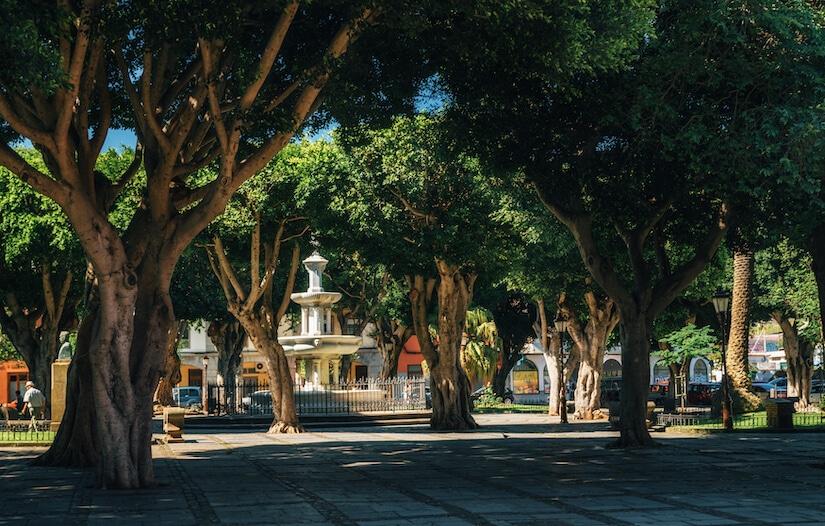 Head to Plaza delAdelantado to start exploring culture in Tenerife
