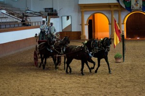 Royal Andalucian School of Equestrian Art was visited while staying at Arcos Gardens fractional property