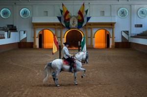 The dancing horses were visited while staying at Arcos Gardens fractional property