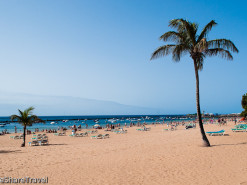 Four of the best: beaches on Tenerife's northern coast