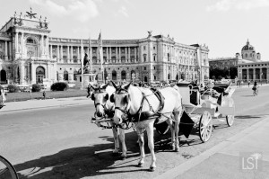A horse and cart around Vienna may be the perfect way to take in the city