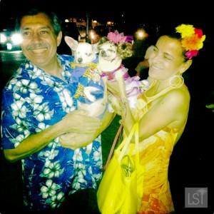 San Antonio Fiesta dogs
