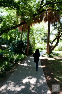 Wandering through the gardens at the Alamo