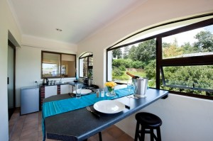 Vasnat Naturist Spa Resort, kitchen