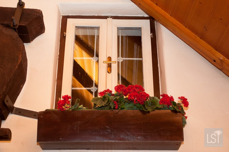 Indoor window boxes at the Heurigen, Erika's Buschenschank