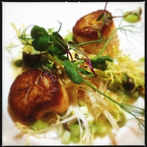 Incredible scallops at Toronto restaurant, Bosk