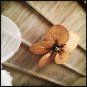 Even the ceiling fans are attractive at Bequia Beach Hotel