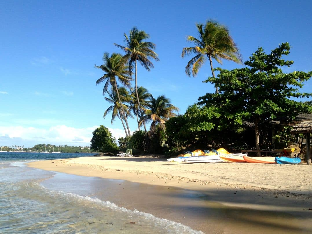 Beach at Young Island Resort