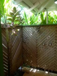Outdoor shower, Young Island Resort