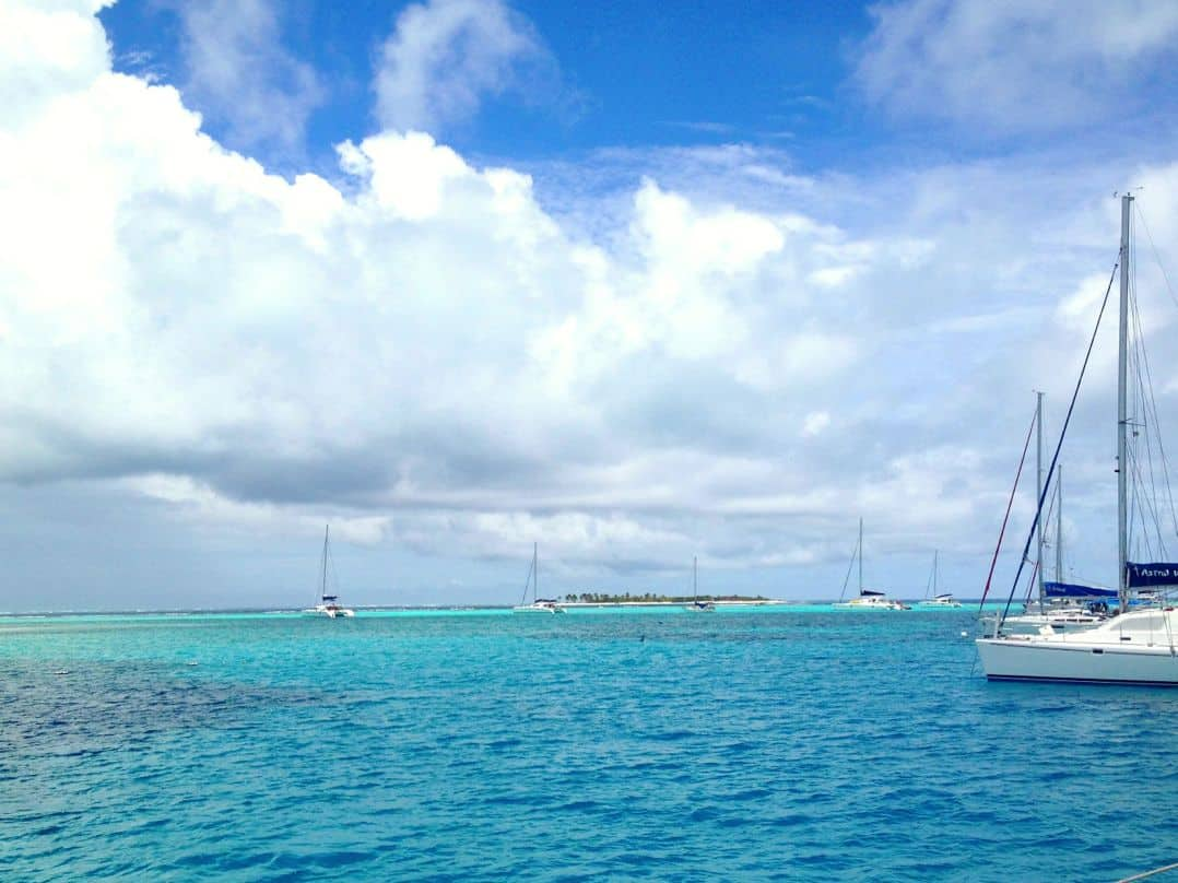 Swimming with turtles in the Tobago Cays