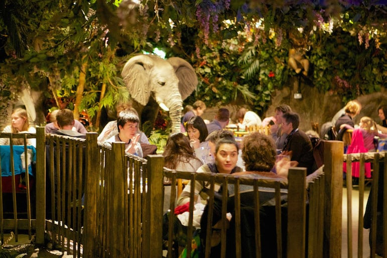 Eating in London - Rainforest Cafe
