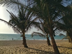 Dial An Exchange boosts summer availability in Gambia