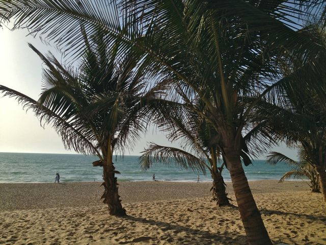 Enjoy Gambia's Atlantic beaches with Dial An Exchange