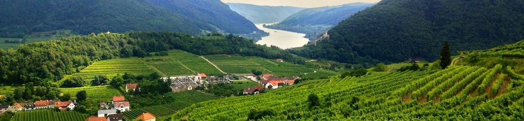 Austrian wine producing country - the Wachau Valley with the Danube River in the distance