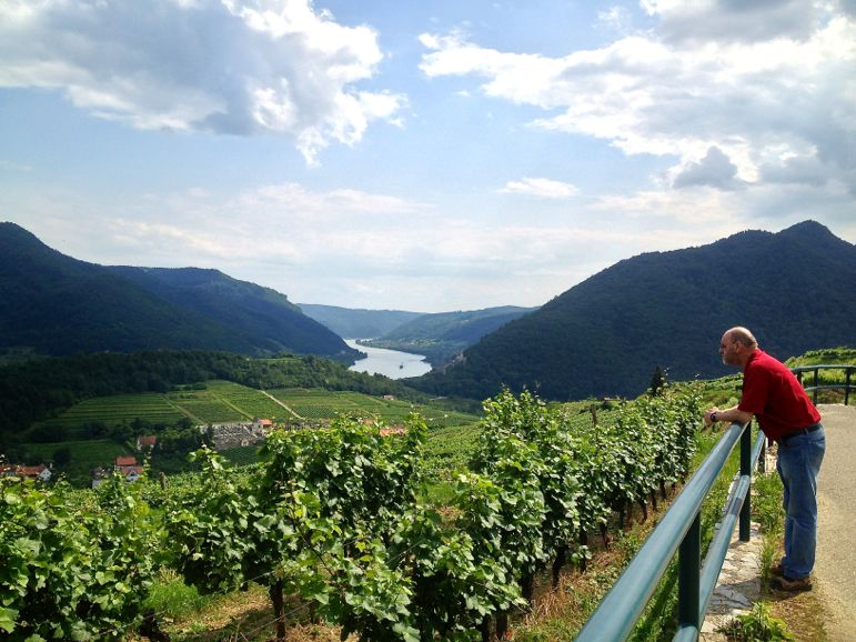 Overlooking the Austrian wine region of Wachau