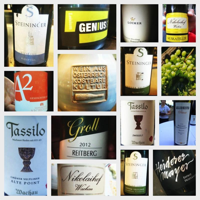Wines of the Wachau and Kamptal regions of Austria 2