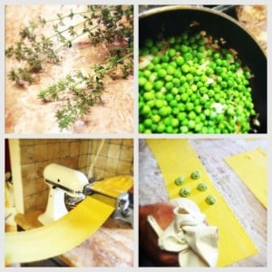 Making pea and nipitella ravioli filling