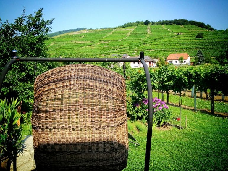 A seat with a view, in the vinyards at the Donabaum Hotel