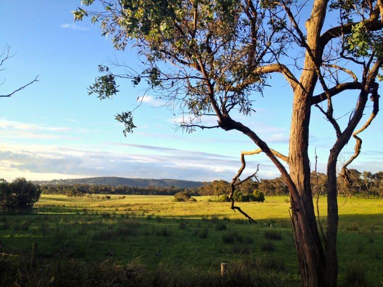 Australia was far greener than I'd expected
