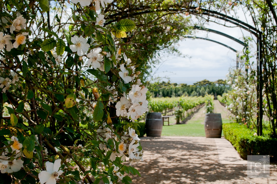 Romantic places to go - Morning Star Estate one of the best of Victoria's gardens