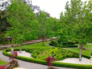 The Enchanted Maze Garden-2