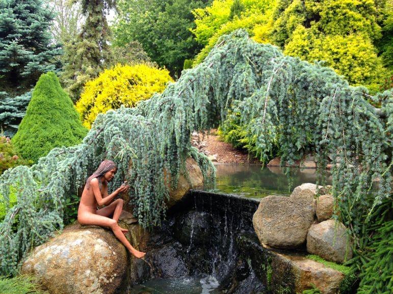 The Enchanted Maze Garden