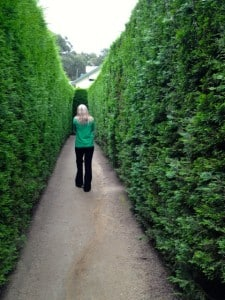 Wandering the hedge maze at the Enchanted Garden