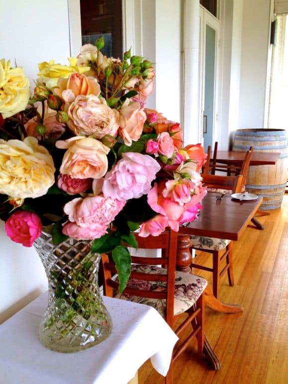 Cut roses at Morning Star Estate