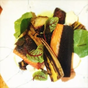 King salmon, flame grilled leeks, red sorrel and fennel mayonnaise