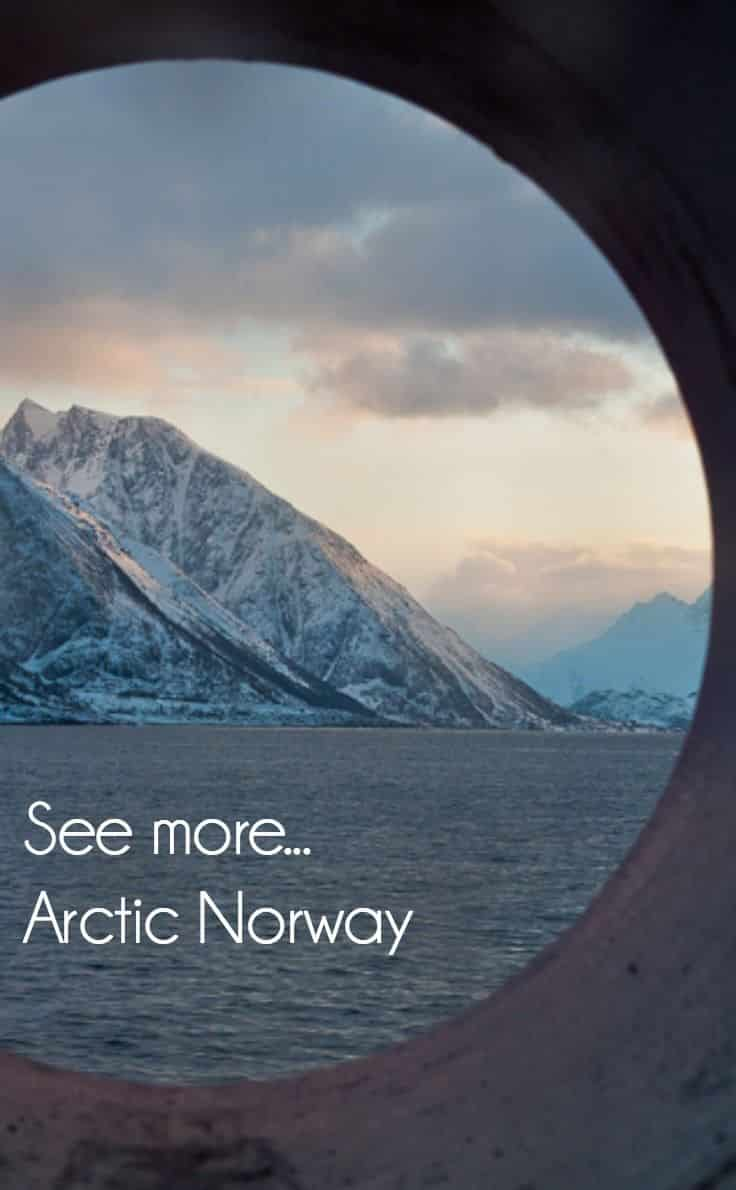 Arctic Norway cruise