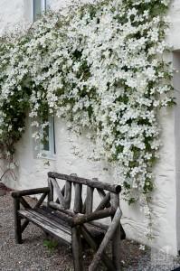 Flower laden cottage at Melfort Village