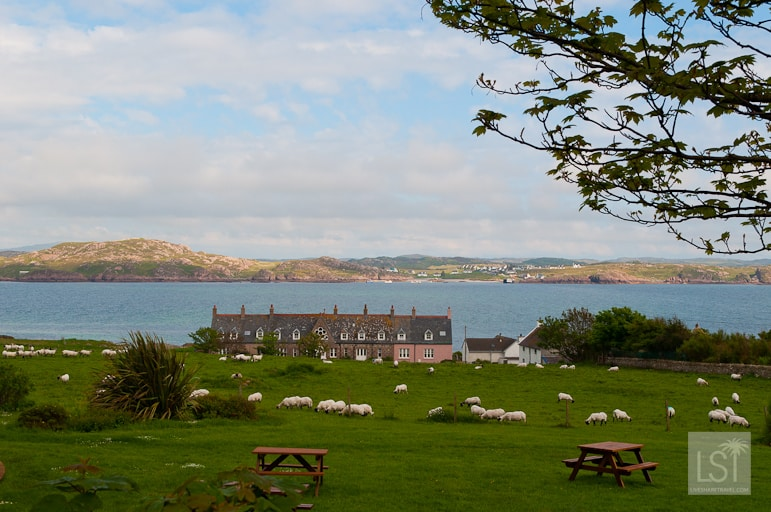 Peaceful pastures in Iona, western Scotland