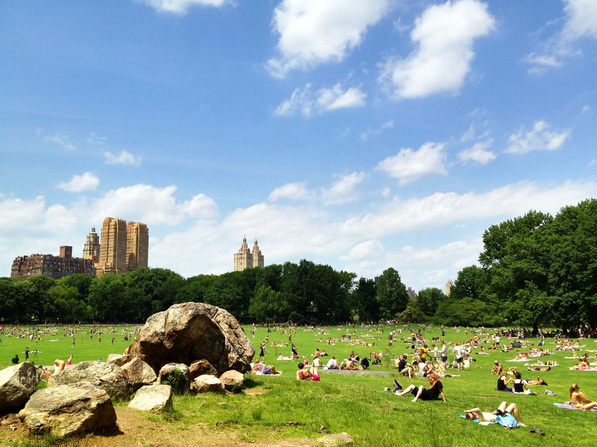 Central Park is one of the unmissible places to go in New York