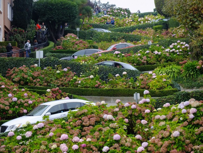 Lombard Street, one of of the quirkiest places to go in San Francisco. Pic: Stuart Barr