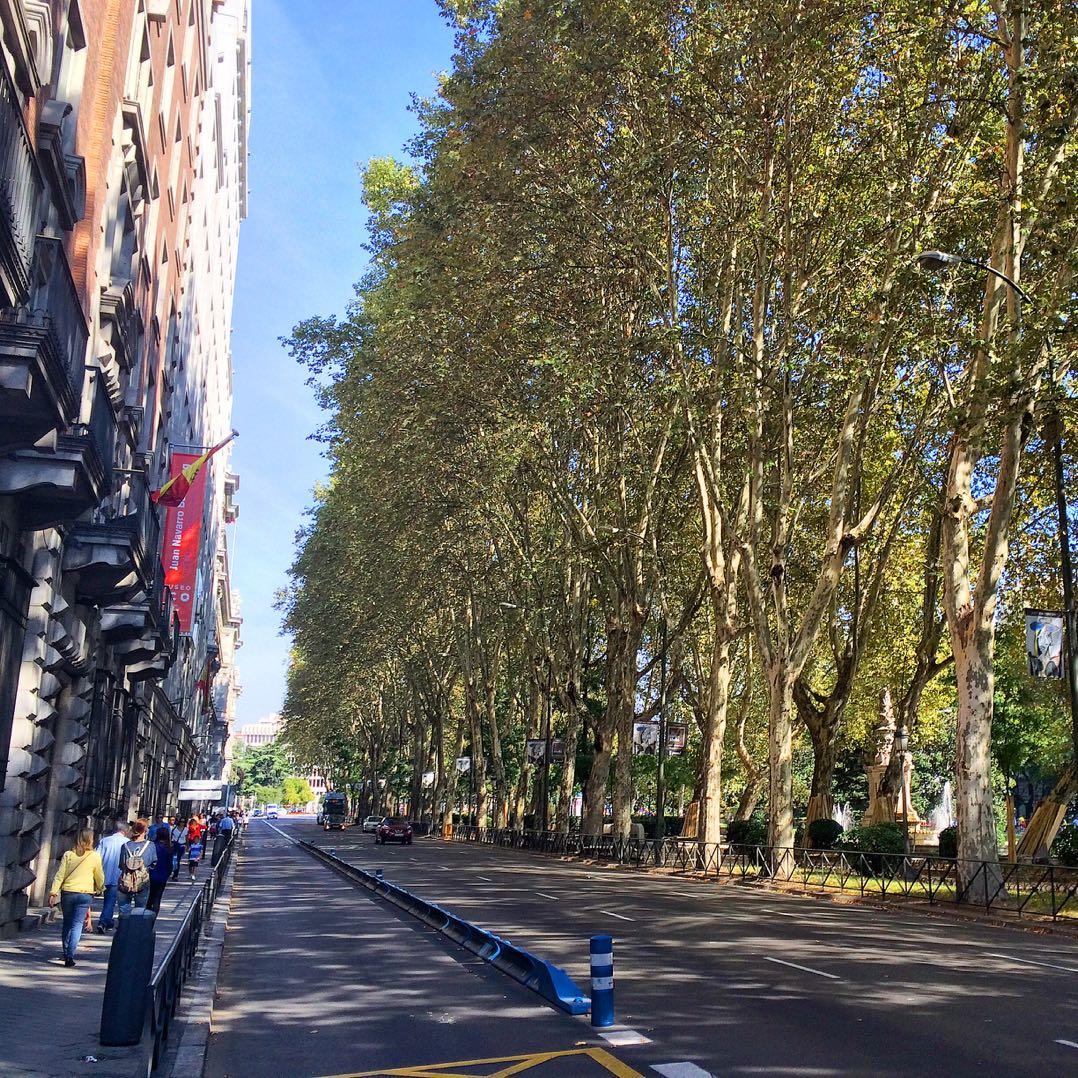 Things to do in Madrid on a luxury weekend break