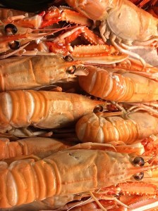 Things to do in Madrid - sample shrimps at the Westin's Opera Brunch