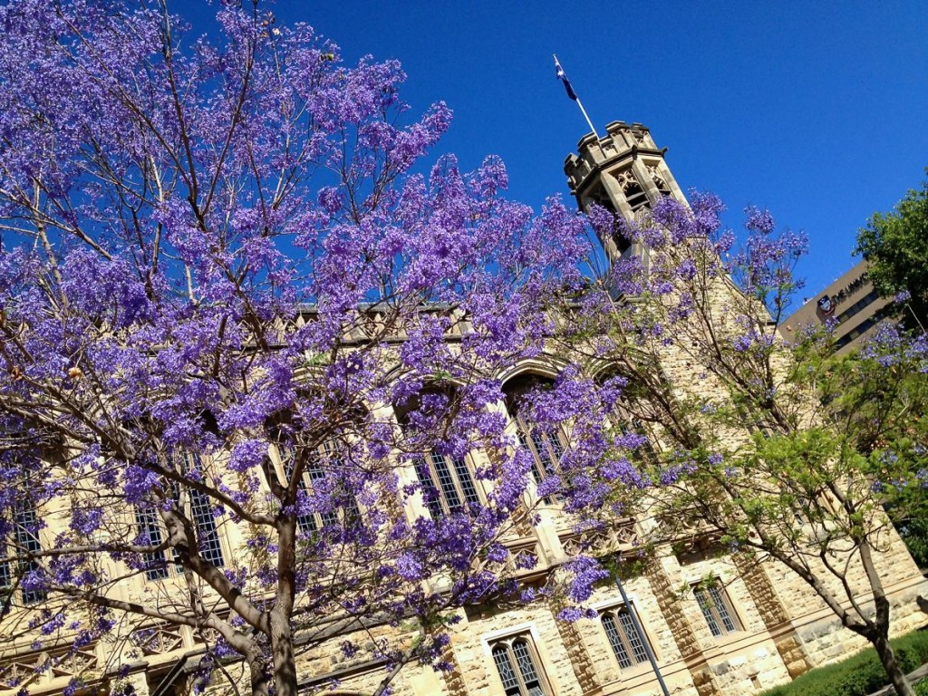 10 best places to go in the world - Bonython Hall in Adelaide, Australia
