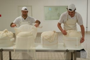 Food in Italy - producing parmesan cheese