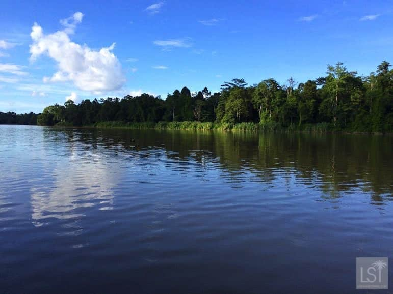 On the Kinabatangan River - one of Sabah's top honeymoon destinations