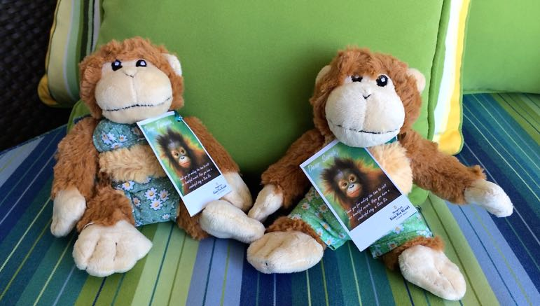 Parting gifts from the Shangri-La Rasa Ria, to remind us of our stay and encounter with their oranguatans
