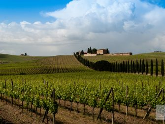 Five unforgettable places to go and things to do in Tuscany