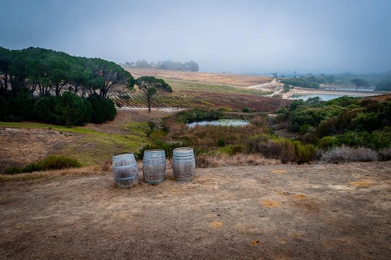Best wine destinations - a barrel of fun in Stellenbosch, South Africa