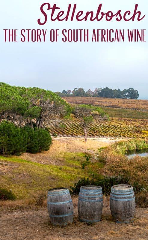 Tales of Stellenbosch wineries