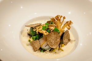 Cooked sole and chanterelle mushrooms at the 1217 restaurant