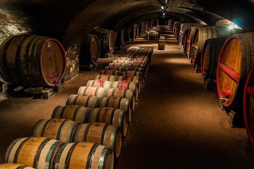 Heading into the cellar at Château de la Chaize for a tasting after Beaujolais Nouveau Day