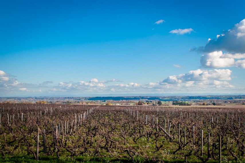 The vineyards at Chateau de Pizay cleared of vines after the harvesting of Beaujolais Nouveau