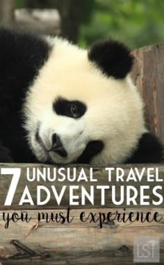 Seven best quirky adventures and unusual travel destinations