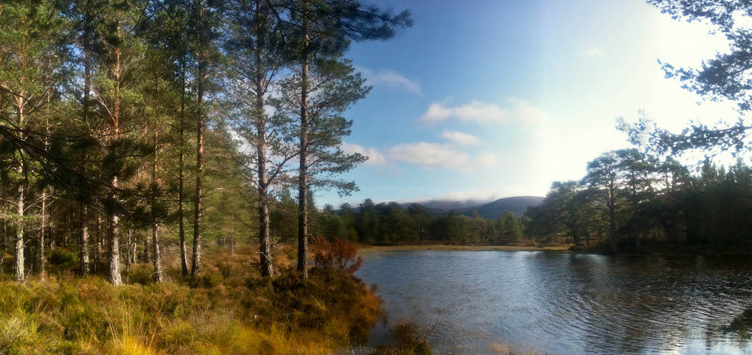 Lake Aviemore | pic: Gordon Watt