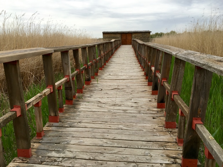 Bird hide at Tablas de Daimiel in La Mancha, Spain